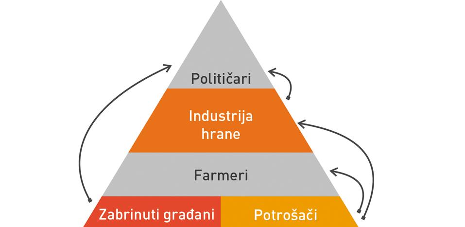 Piramida---strana-Akcija