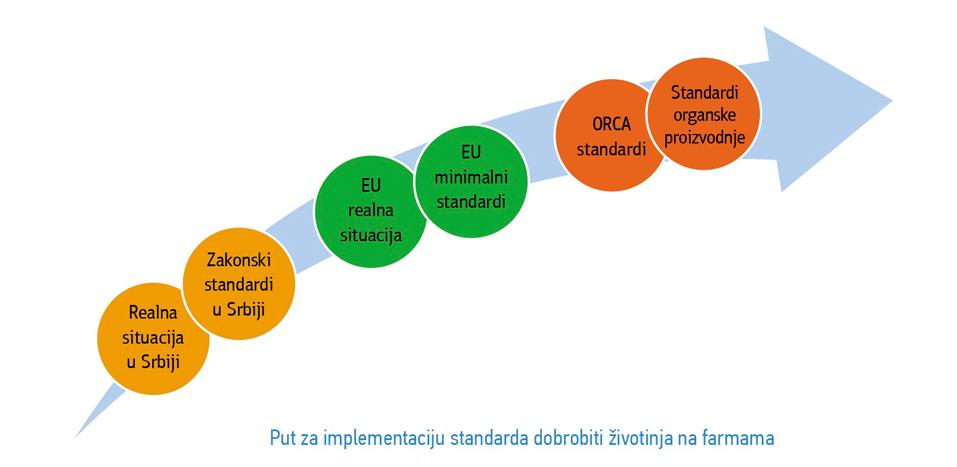 Put-Standarda-Strana-Standa